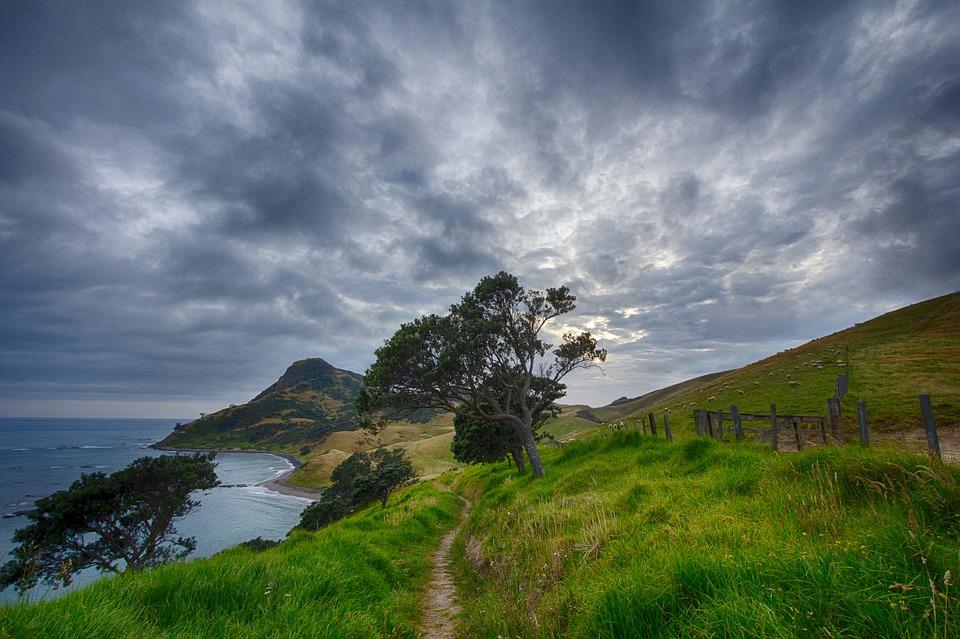 New Zealand hike.jpg