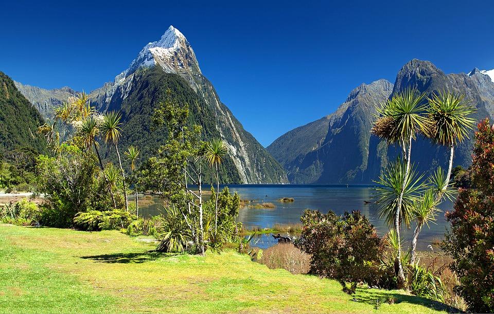 New Zealand Milford.jpg