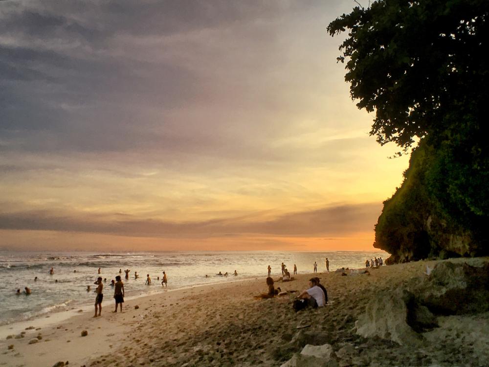 Bali Exotic 5.png