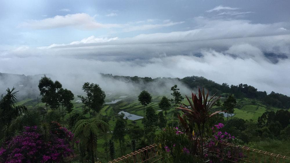 Sulawesi soul 3.jpg