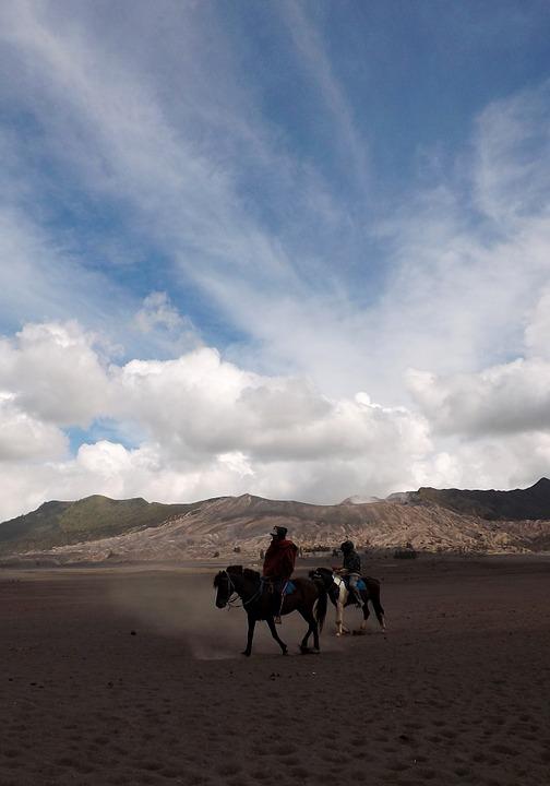 Indonesia horse.jpg