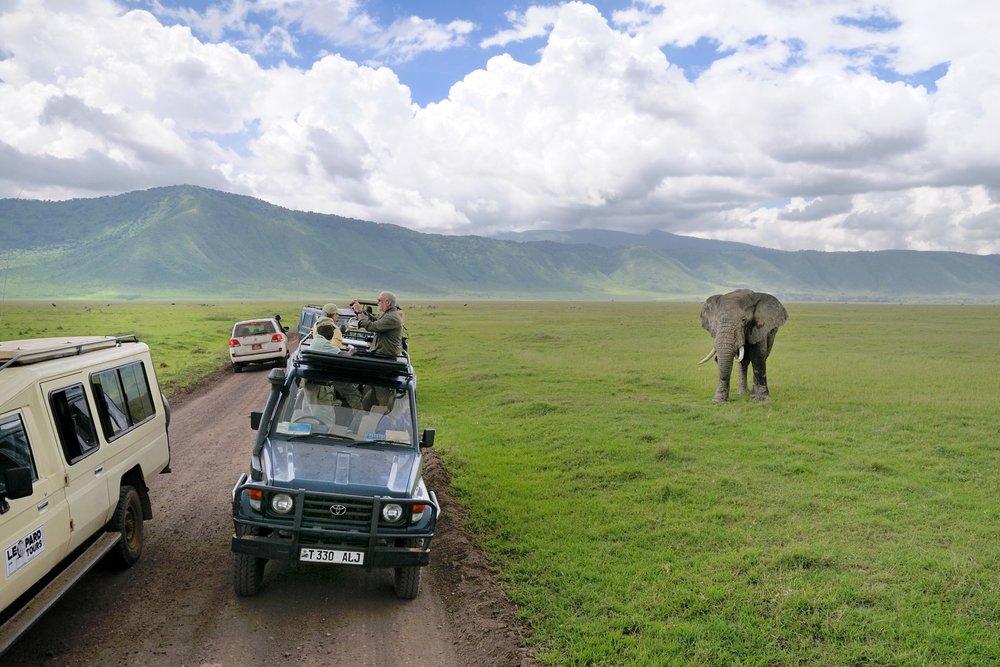 Tanzania Ngorongoro 17.jpg