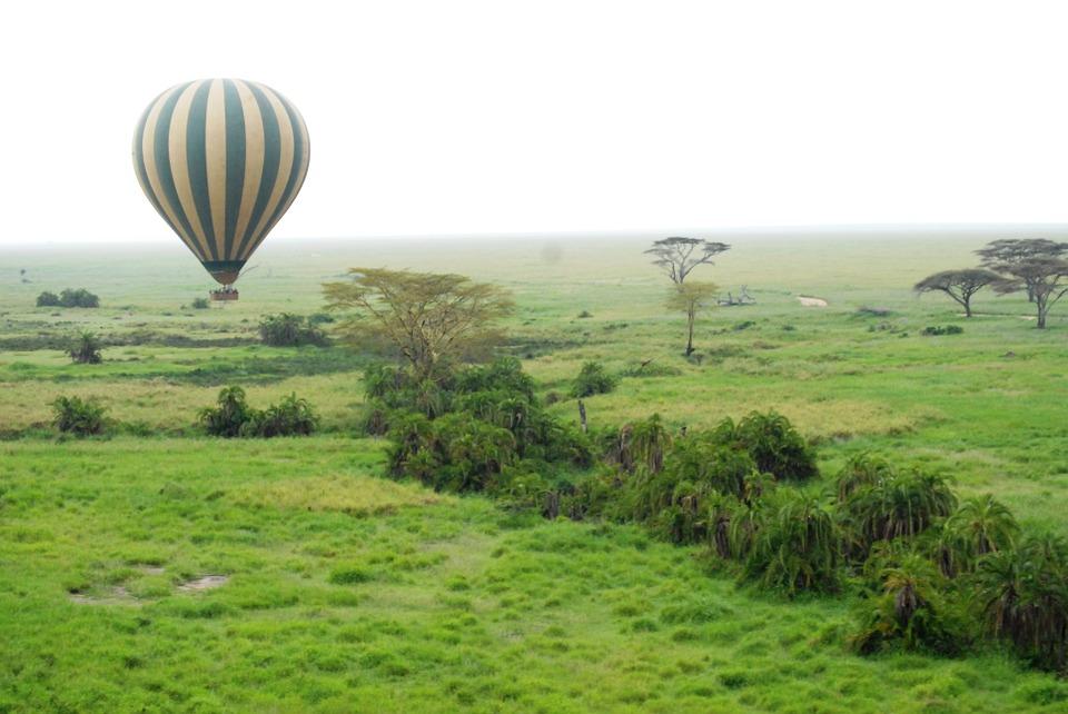 Tanzania Serengeti 20.jpg