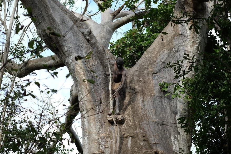 Tanzania selous 8.jpg