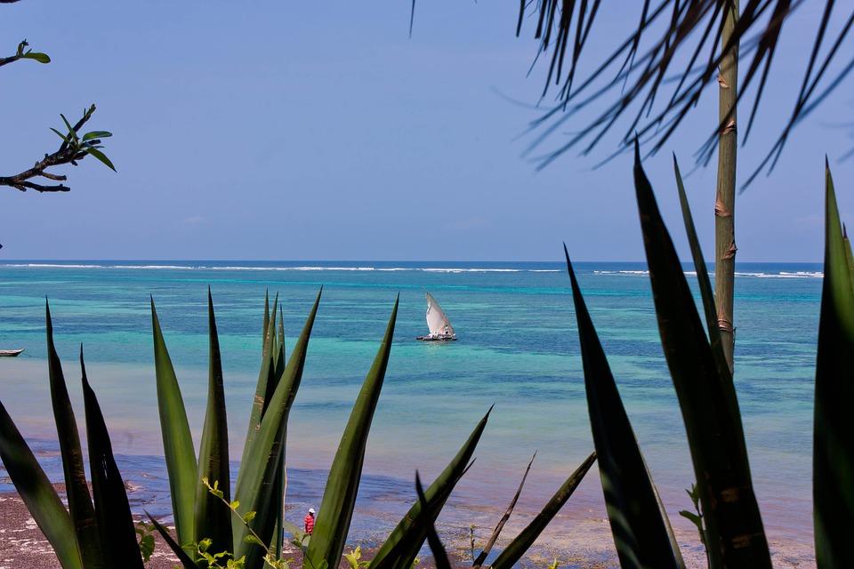 Kenya beach 2.jpg