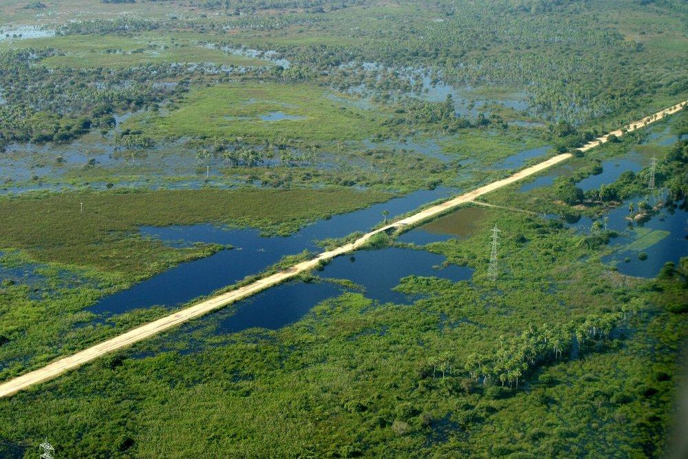 Brazil Bonito Pantanal 7.jpg
