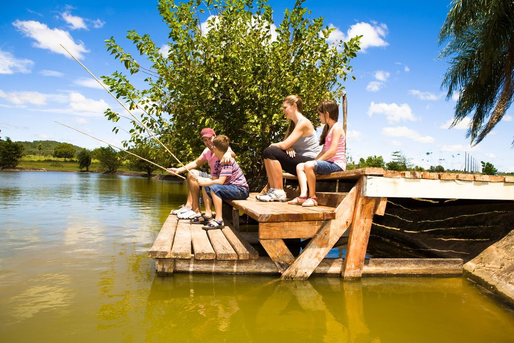 Brazil Bonito Pantanal 11.jpg