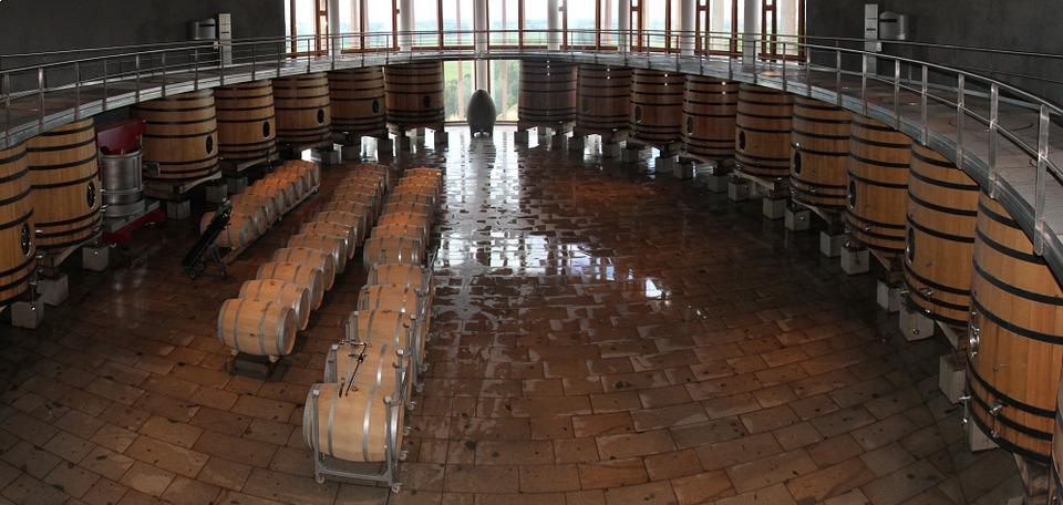 Chile wine 1.jpg