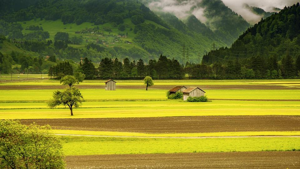 Switzerland farm.jpg