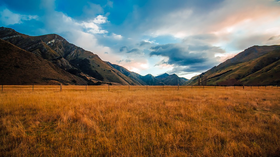 New Zealand 5.jpg