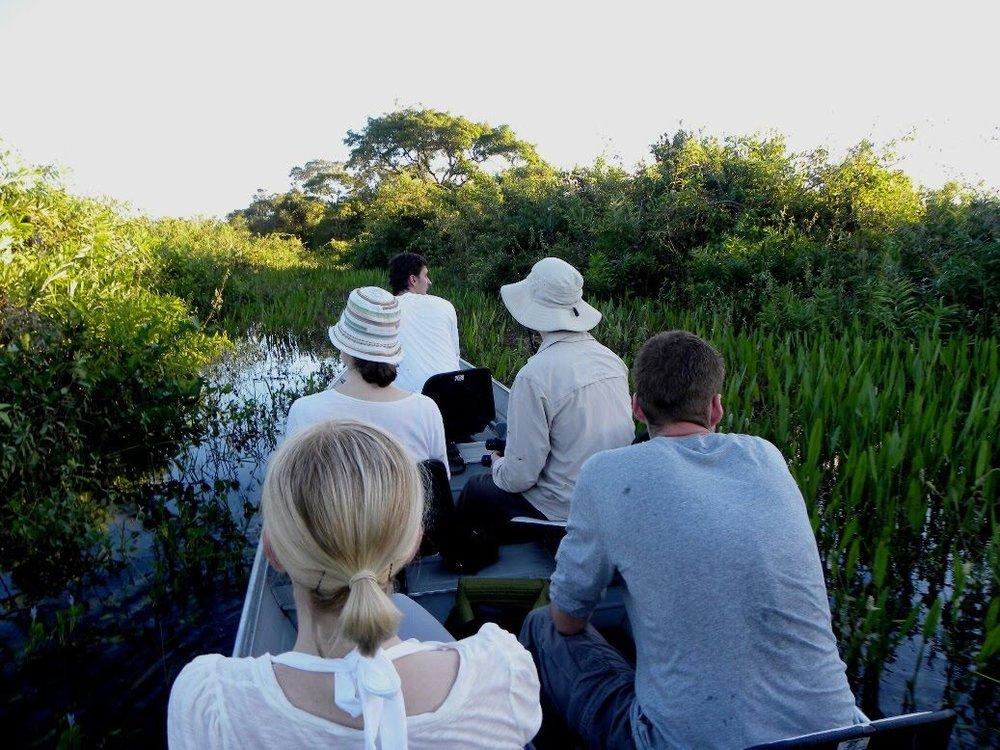 Pantanal Wildlife Tours