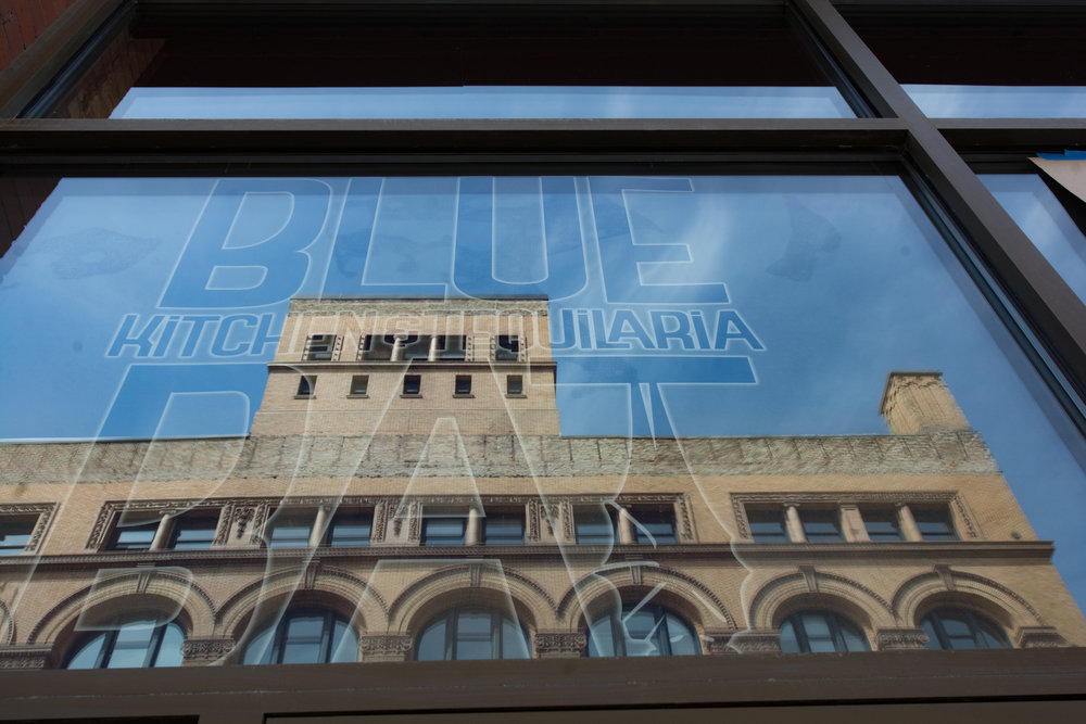 Blue Bat-5-5.jpg