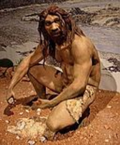 Homo heidelbergensis reconstruction - Wikipedia