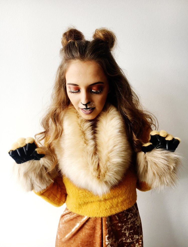 Diy Lion Costume Makeup Makeupview Co