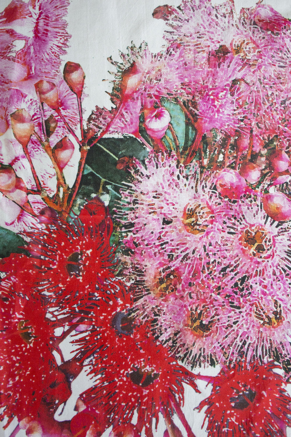 Gum Blossoms by Pip Wilkinson