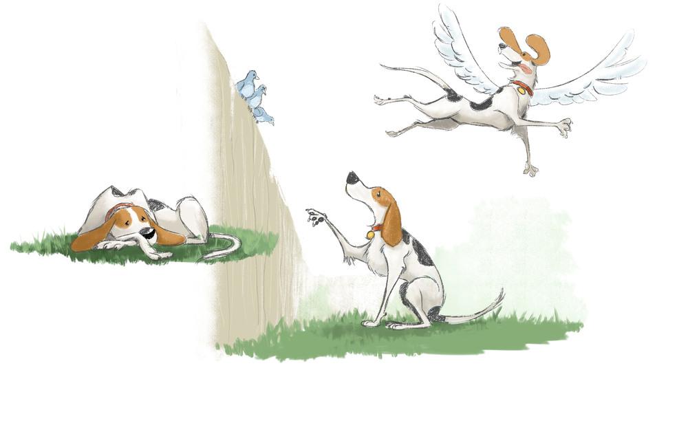 dogsFly_001.jpg