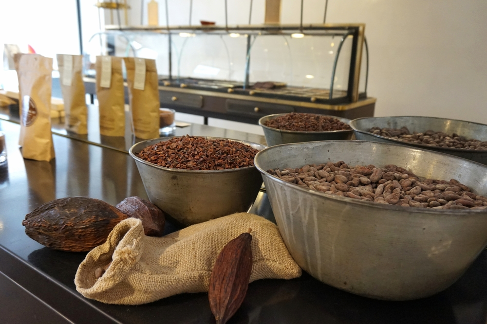 chocolat-ducasse