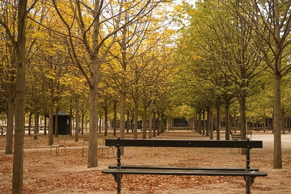 paris-autumn-luxembourg