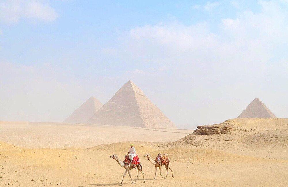 Egypt-Camel