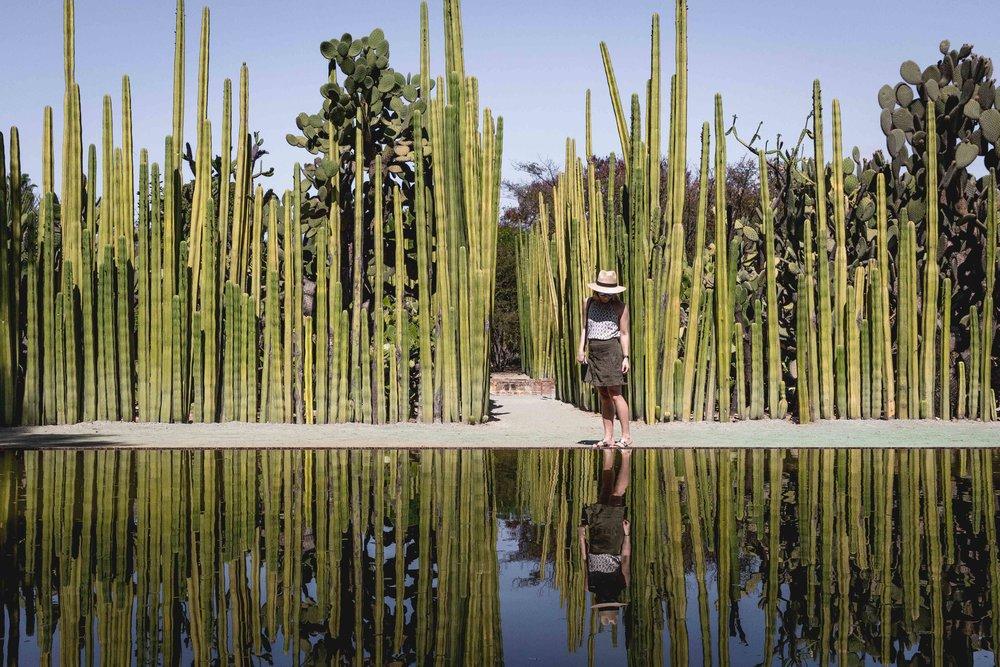 Ethnobotanical-Garden-Oaxaca