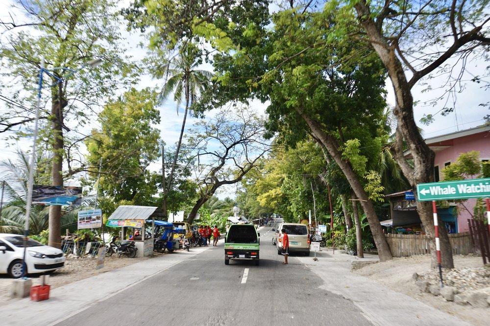 Philippines- Oslob