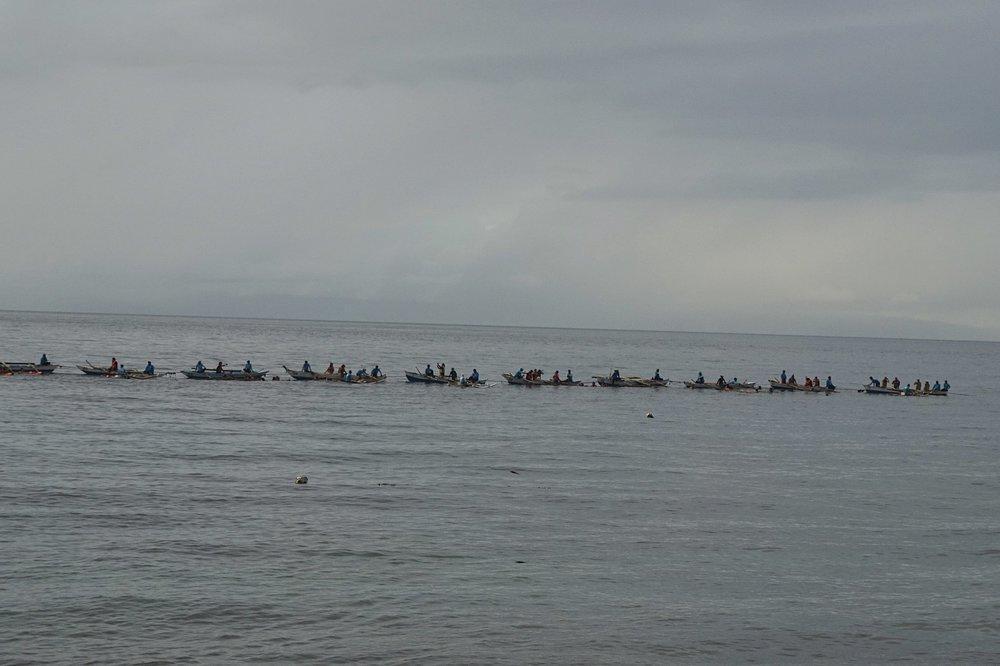 Oslob-Wale-Sharks