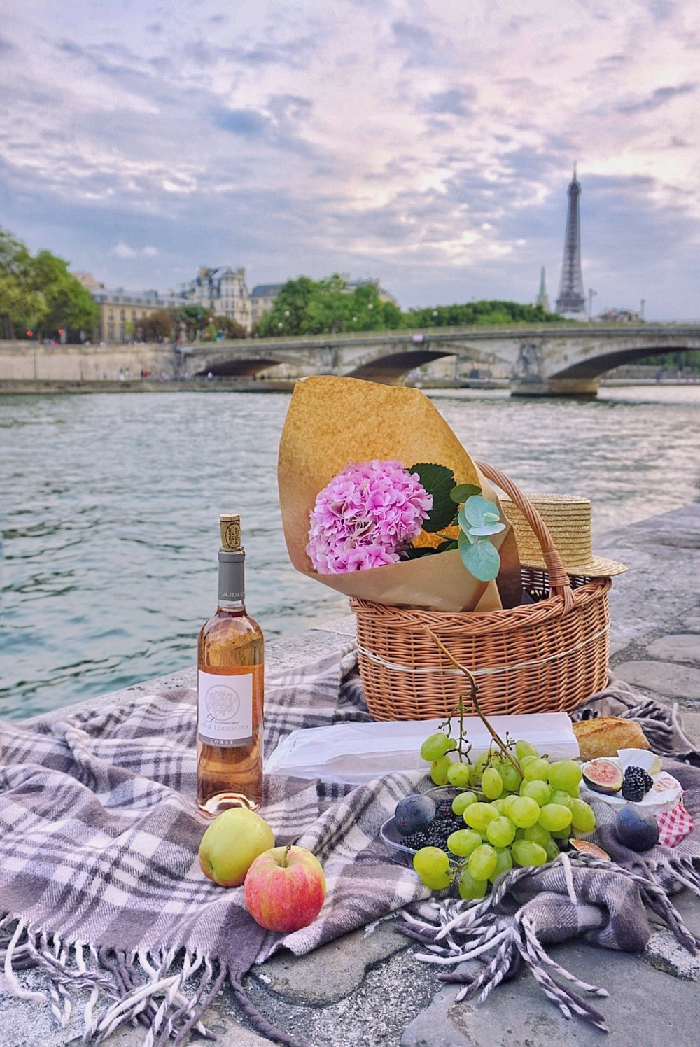 Paris-picnic