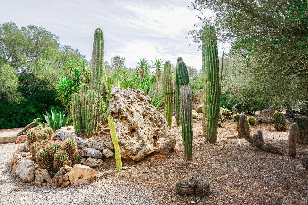 Finca-Rural-Es-Turo-Gardens