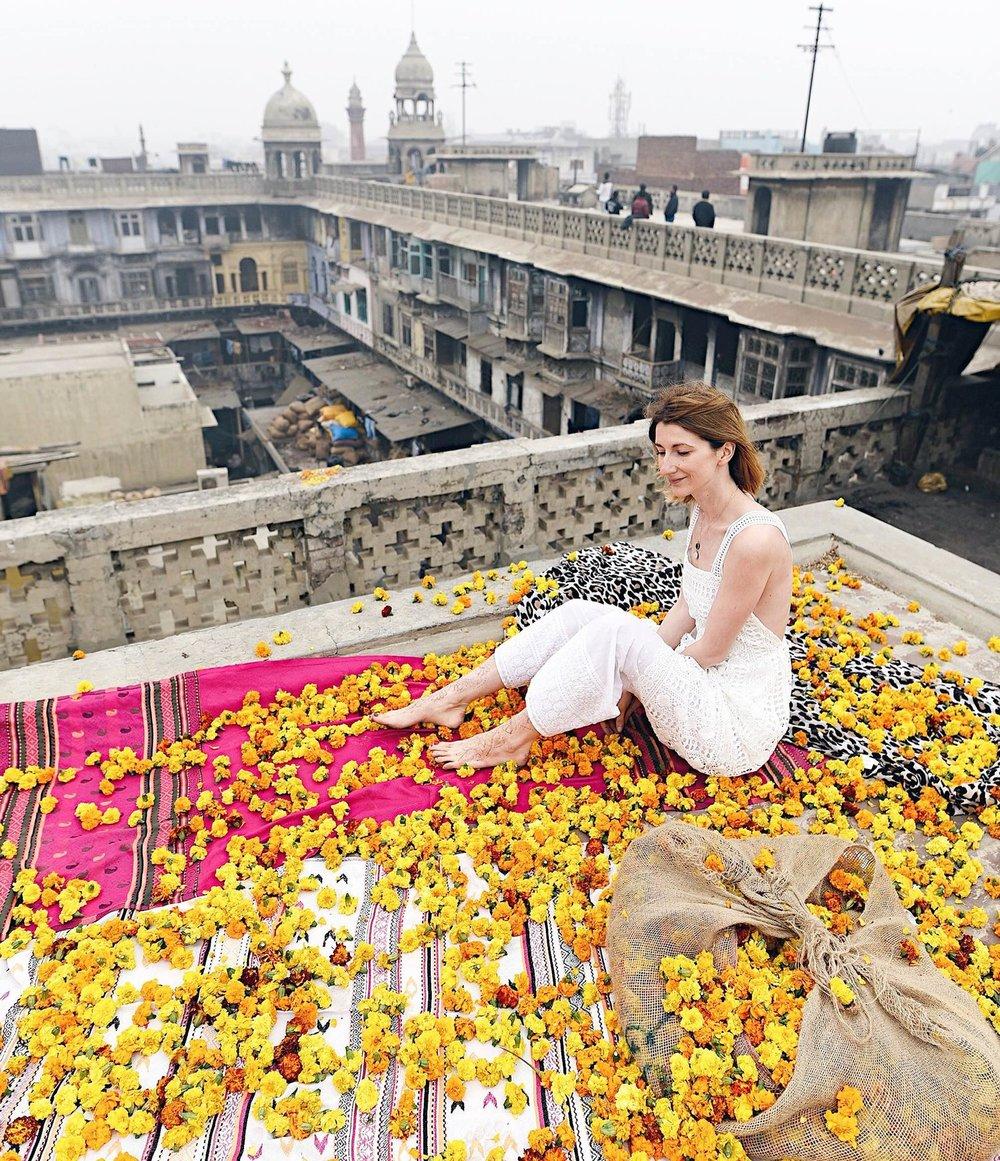 Delhi-Zorymory