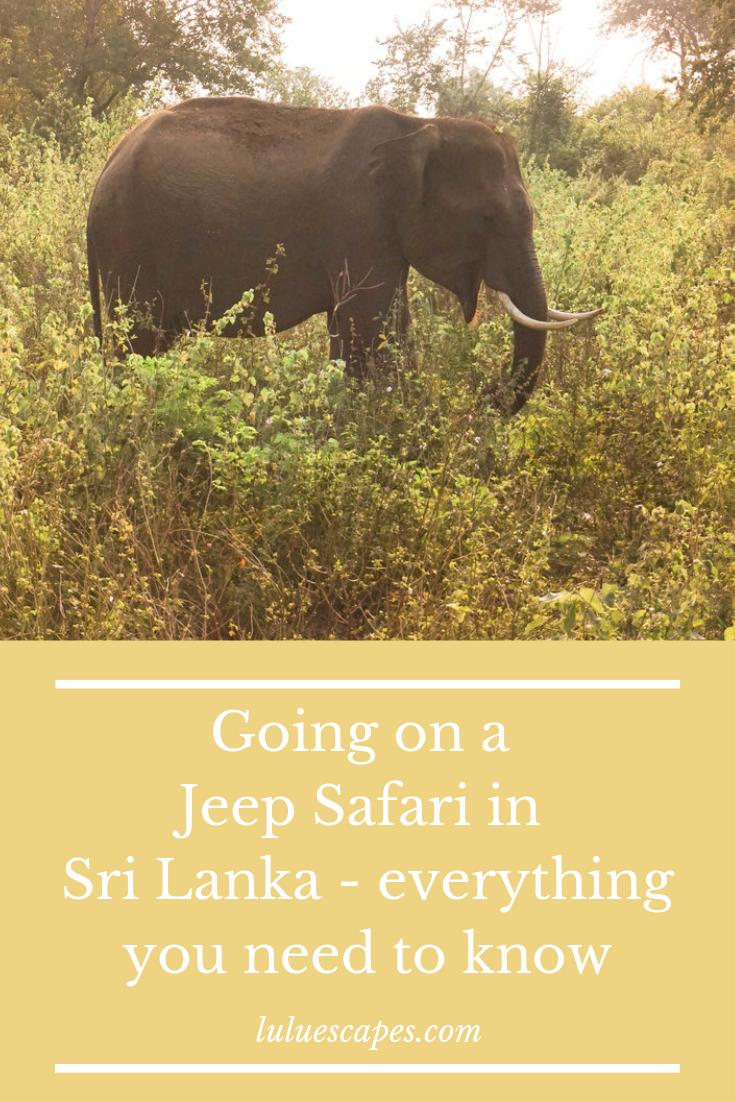 Lulu Escapes - Sri Lanka Safari