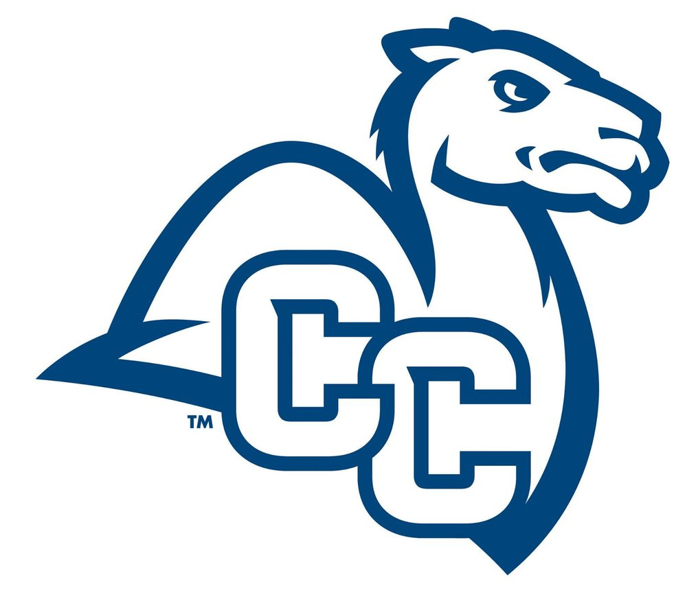 CC_Camel_BLU-1-.jpg