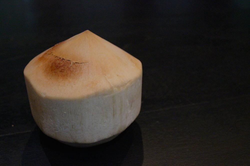 organic coconut owen and alchem.JPG