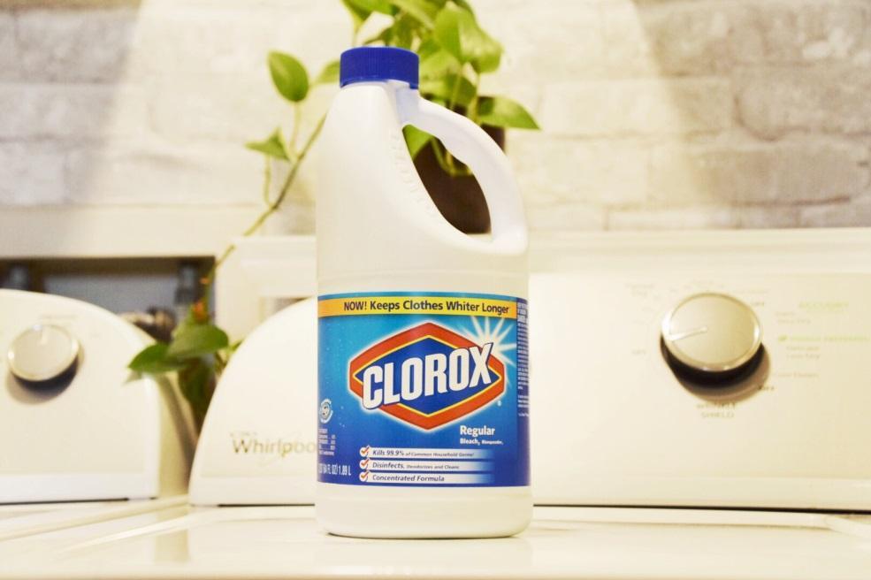 Houston Lifestyle Blogger - Clorox Target 2.jpg
