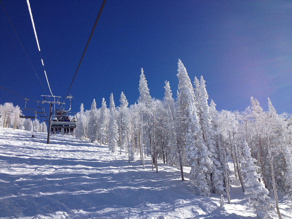 web_ski2.jpg