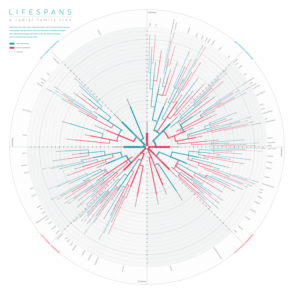 Lifespan Trees - This large-format radial family tree, or