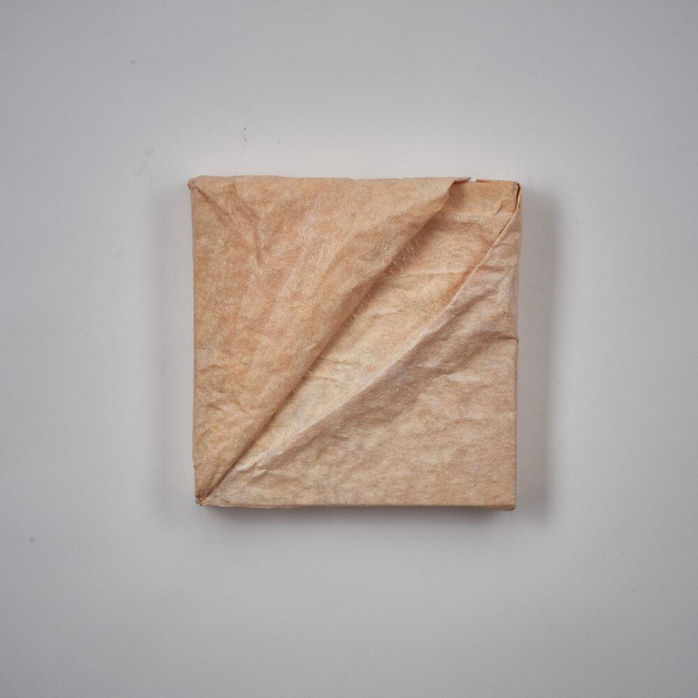 Untitled (Skin) No. 1