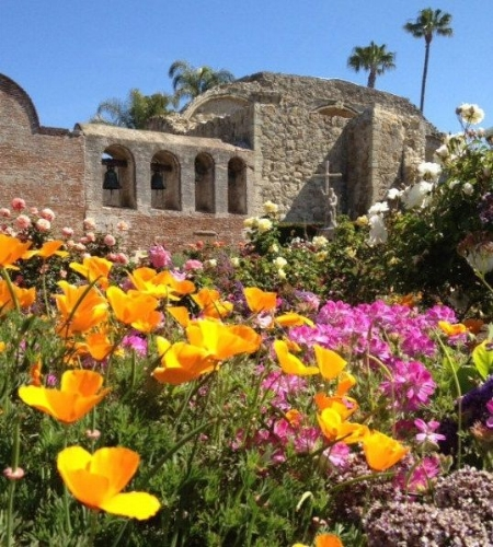 Photo of wildflowers at San Juan Capistrano mission from ocregister.com