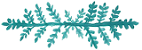 Saddleback Memorial Hospital doula teal fern