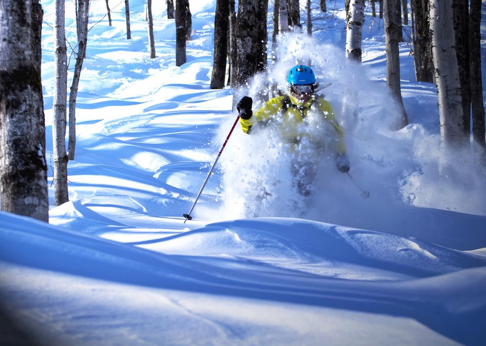 Trees, bump and powder skiing all at the same time be experienced at LeMassif, QC