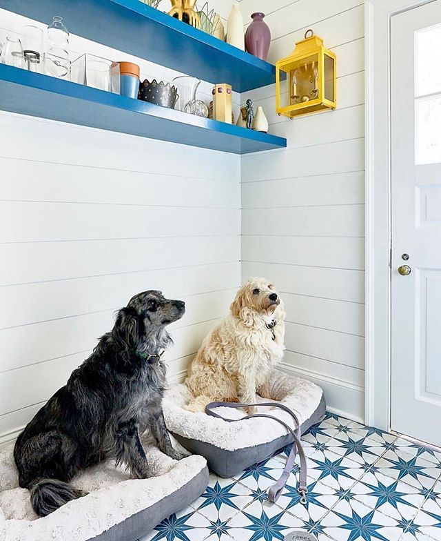 This mudroom by @theenglishroom has it all going on! Give me pattern, shiplap and a pop of yellow and I'm feeling 🤸‍♂️🤸‍♂️🤸‍♂️ Not to mention the adorable models!