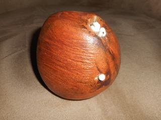 This paperweight has small white projections that are shaped like barnacles. It is not signed.