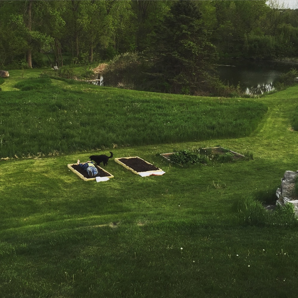 Garden or Grave
