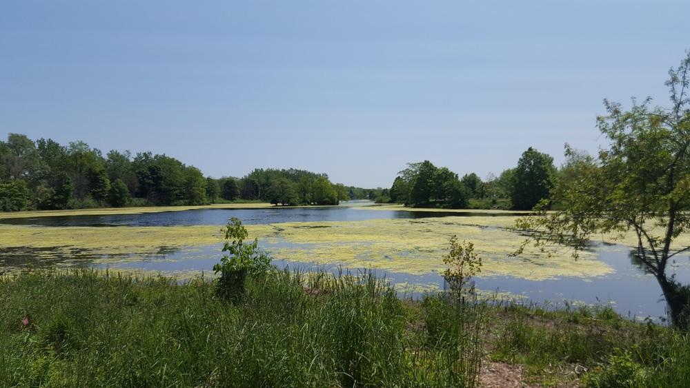 Lake Katherine Nature Center and Botanic Gardens