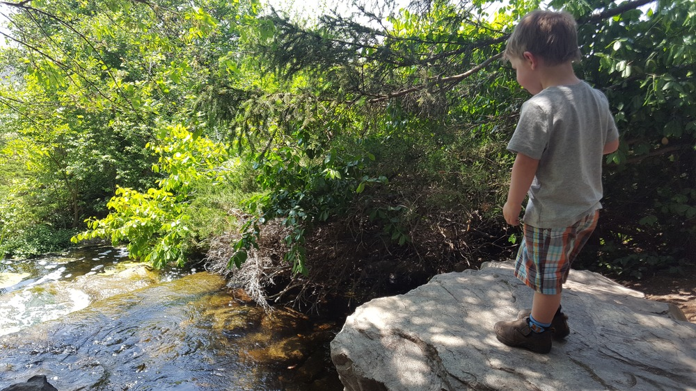 Lake Katherine Waterfall Garden