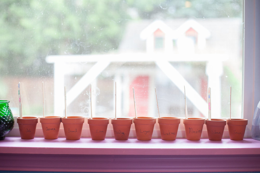 IMG_1677+sprouts+windowsill+pots.jpg