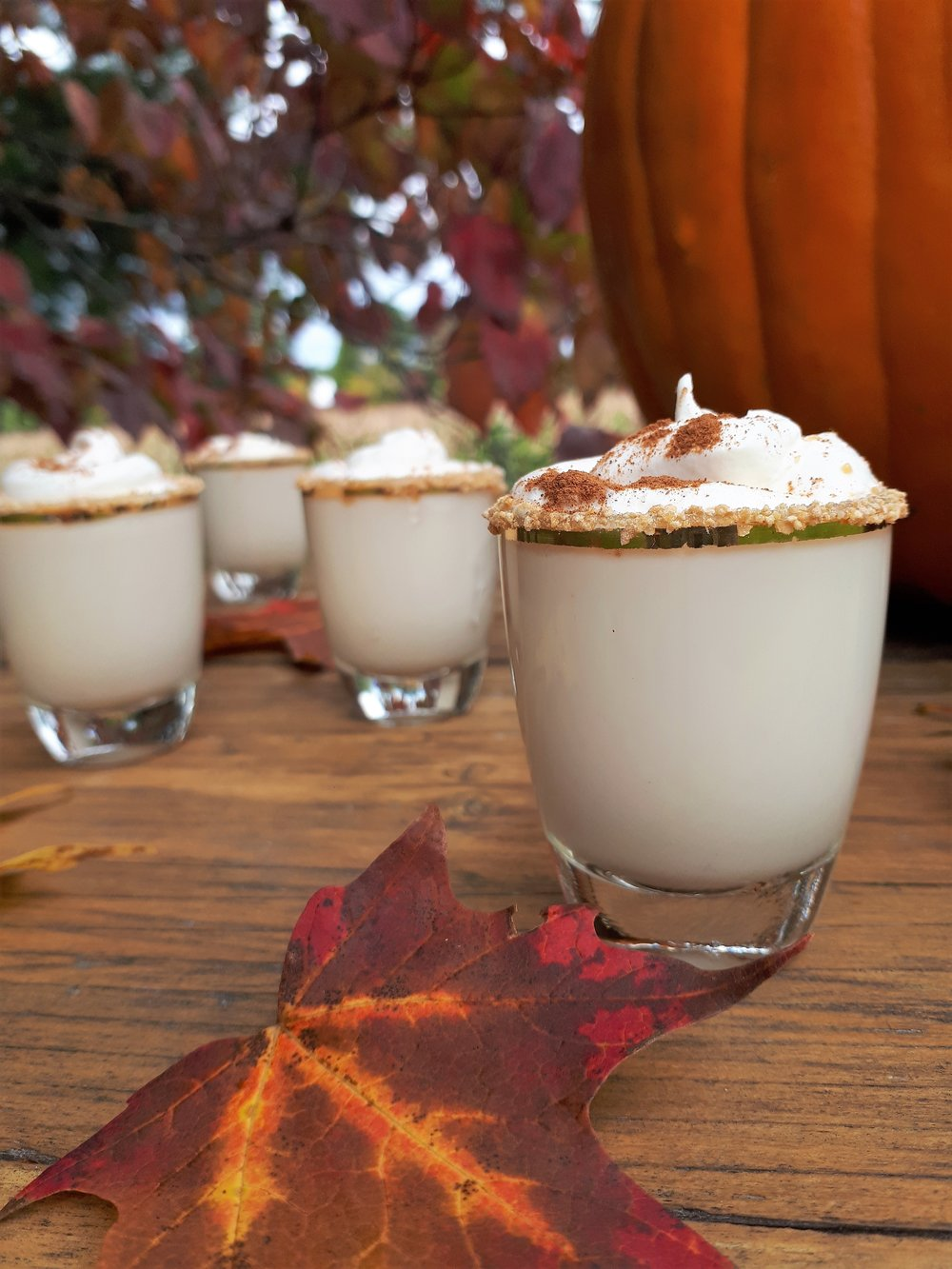Pumpkin Pie shots main.jpg