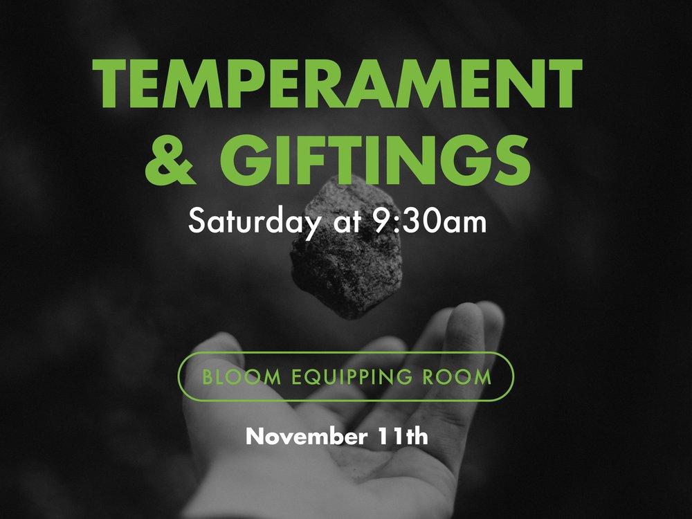 Temperament & Giftings Class_reg-01.jpg