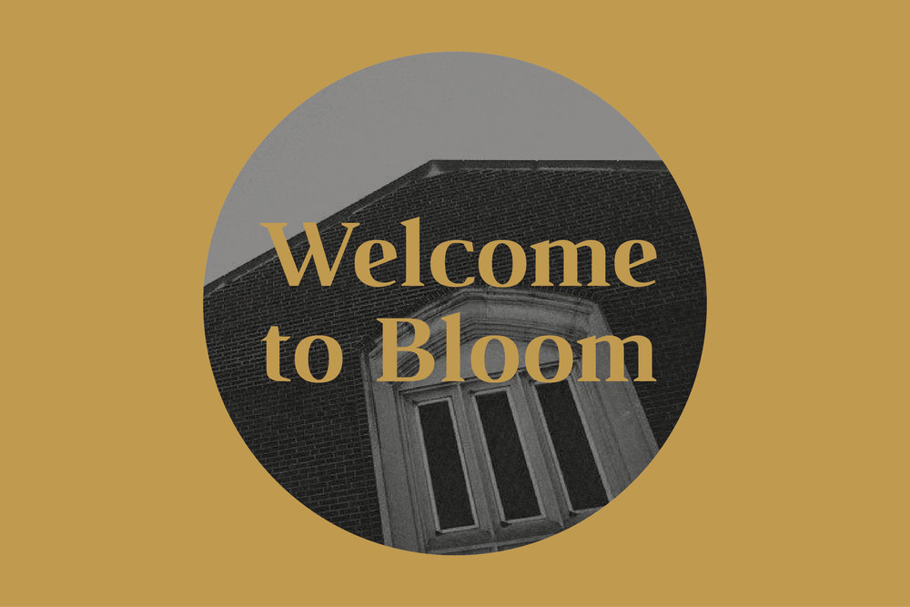 Welcome to Bloom Graphic_large-01.jpg