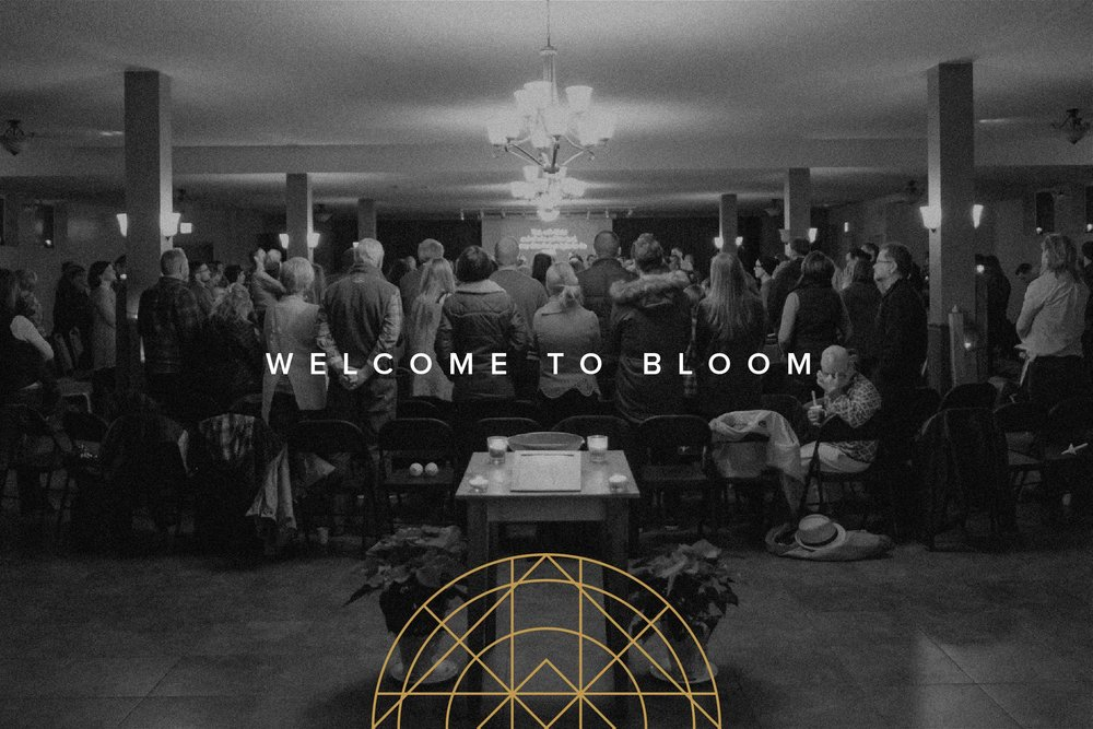 Welcome to Bloom Email Graphic-01.jpg
