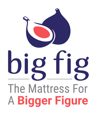 bigfig-logo-TransparentBG-stacked-DoubleSubline-medium.png